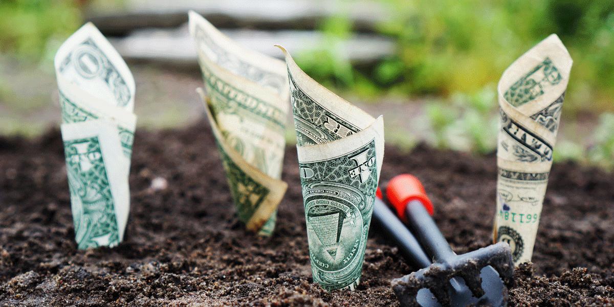 Growing Interest Money