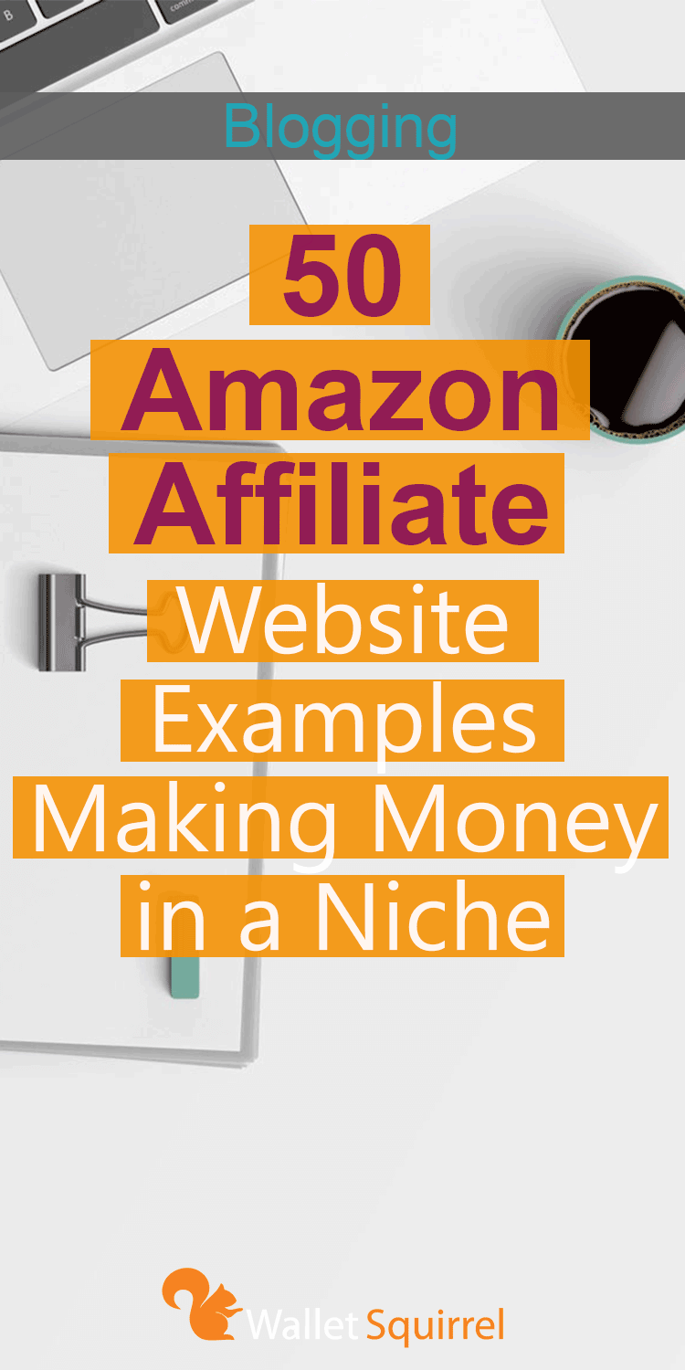 50 Amazon Affiliate Website Examples Making Money In A Niche