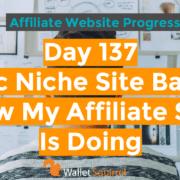 Day 137 Affiliate Website Progress