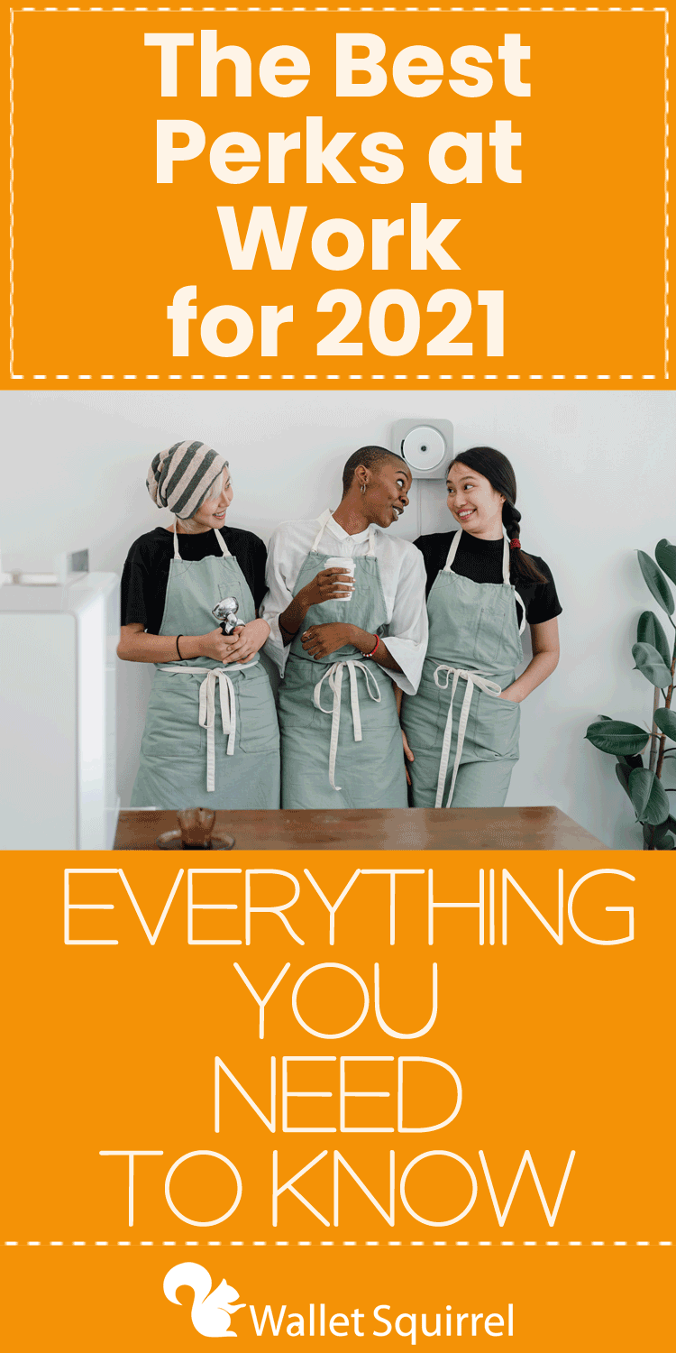 Most of us have to work a day job. We have bills to pay and mouths to feed. But that doesn't mean we have to take whatever they offer us. Many companies offer incredible perks at work and benefits that help take the sting out of working.
